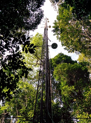 Flux tower in Tapajós, Pará, Brazil